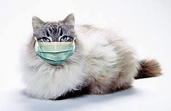 предотвращения или лечения